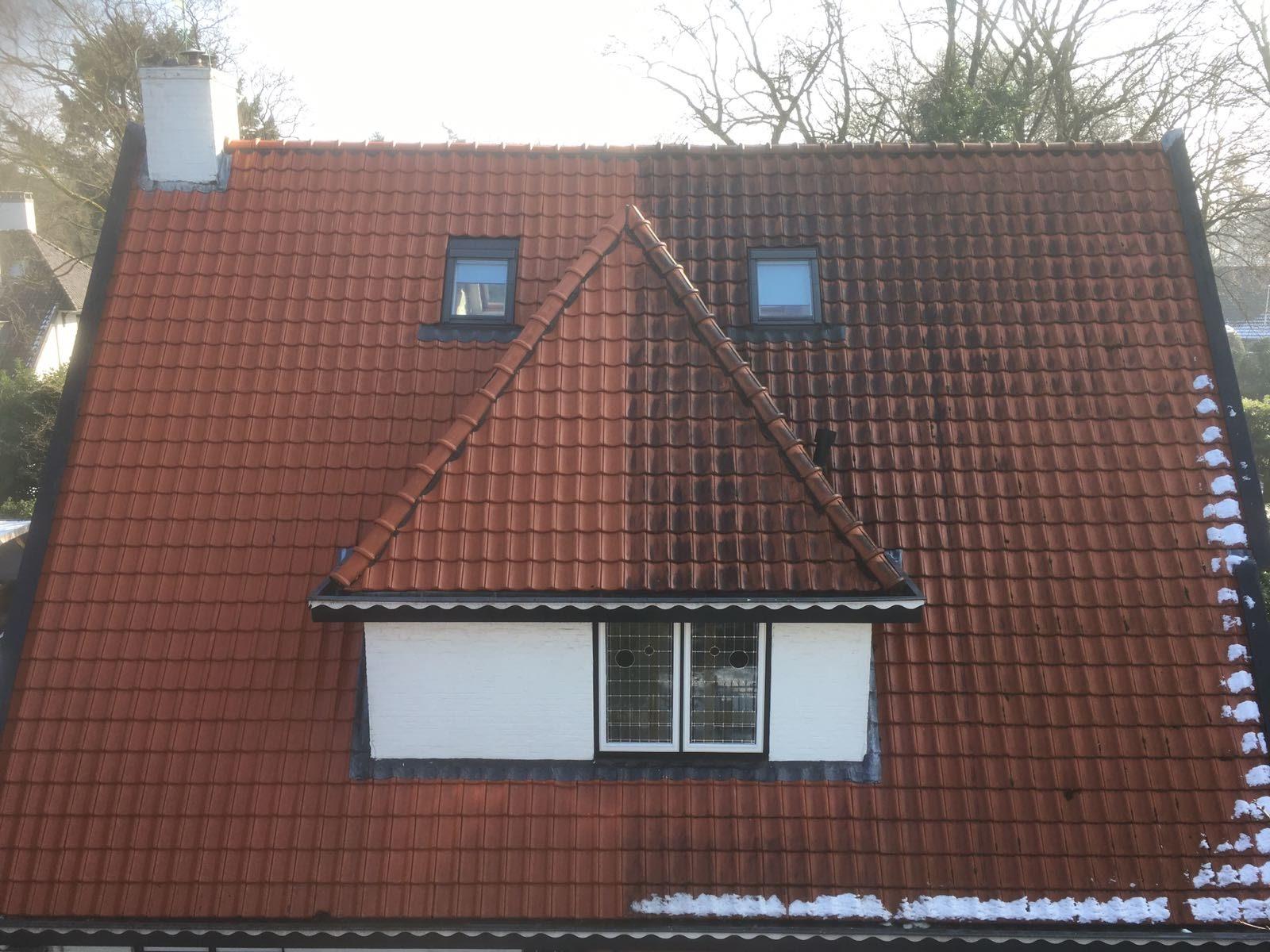 Dakpannen reinigen in de winter.jpg