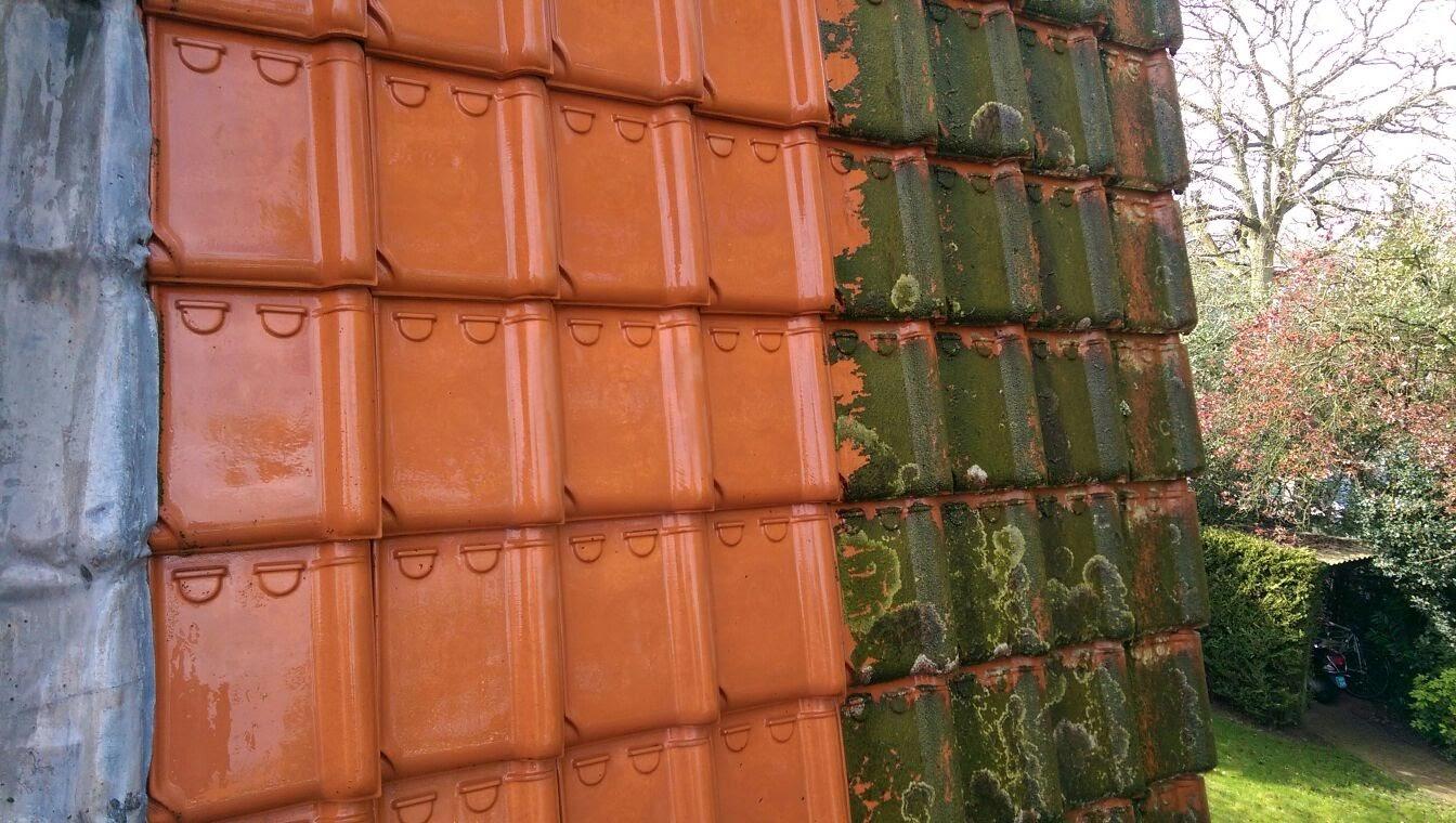 Door algen vervuilde dakpannen schoonspuiten.jpg