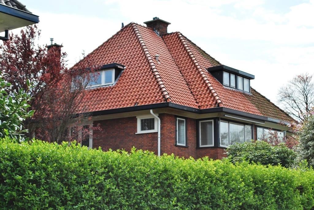 Eindresultaat reiniging dakpannen.jpg