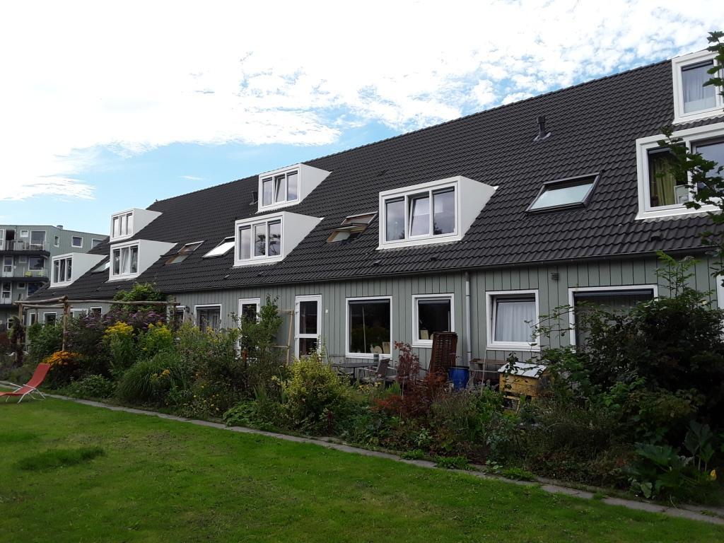 Gereinigde dakkapellen voor een woningbouwvereniging.jpg